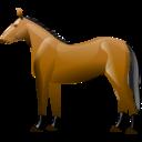 תמונת תצוגה לרכיבה על סוסים
